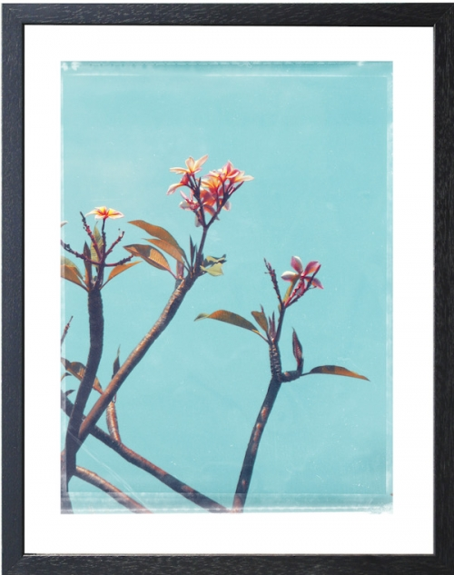 FLOWERPAIR